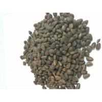 Кедровый орех в скорлупе, урожай 2016 года, Алтайский край, 1 кг